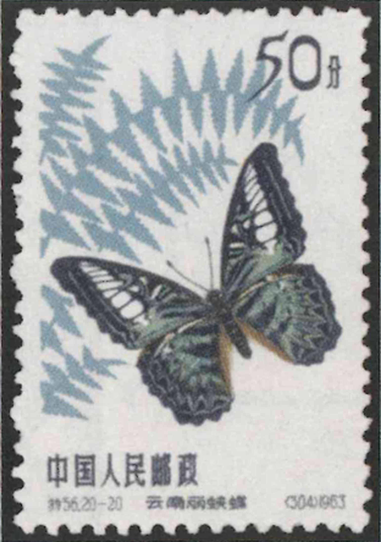 timbre-butterflies
